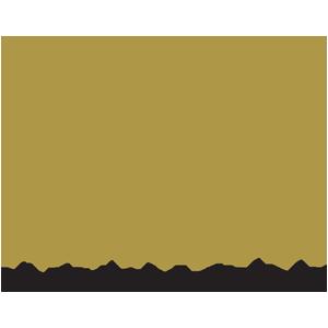 Picture Perfect - Partneri - Dance Spot